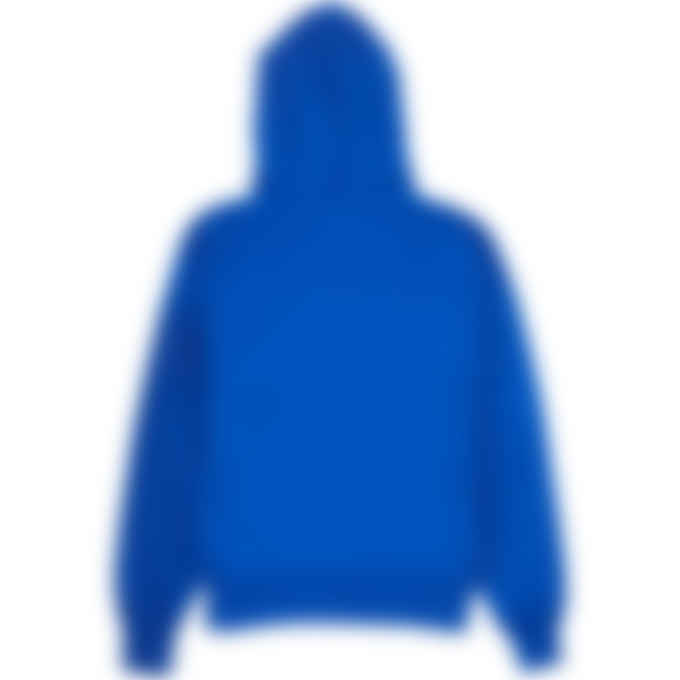 Champion - Reverse Weave Pullover Hoodie - Surf The Web